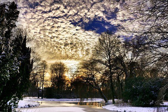 Winterlicht van Harrie Muis