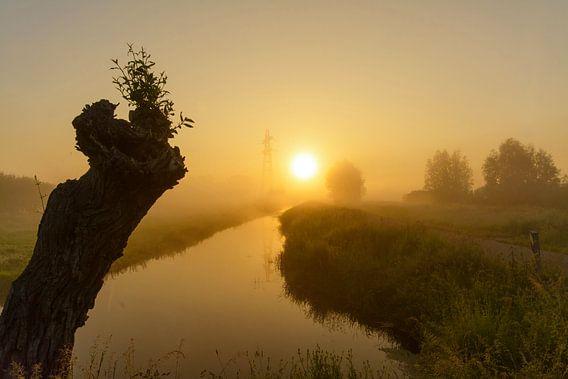 Zonsopkomst tijdens mistige vroege ochtend van Remco Van Daalen