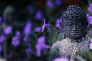Buddha Figur van