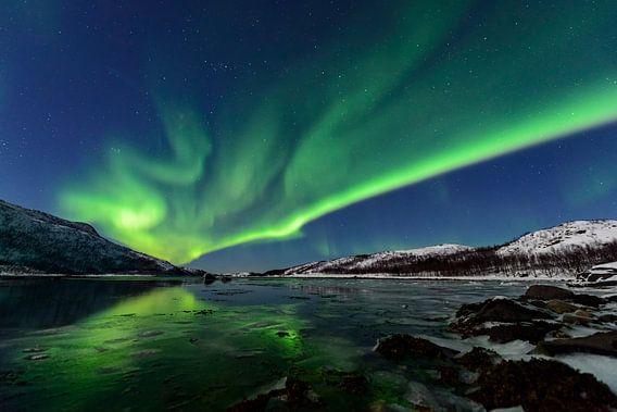 Noorderlicht, Poollicht of Auroroa Borealis in de nachthemel in Noord-Noorwegen van Sjoerd van der Wal