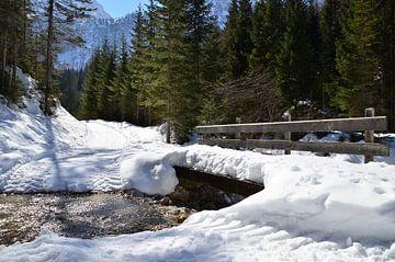 Schneebedeckte Brücke über Gebirgsbach von Fred van Bergeijk