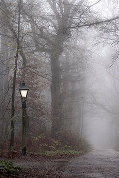 lantaarnpaal in de mist van Tania Perneel