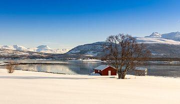 Winter auf der Insel Senja, Norwegen von Adelheid Smitt