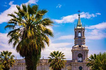 Kathedrale mit Palmen auf der Plaza de Armas in Arequipa, Peru von John Ozguc