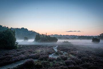 Terhorsterzand, Drenthe van