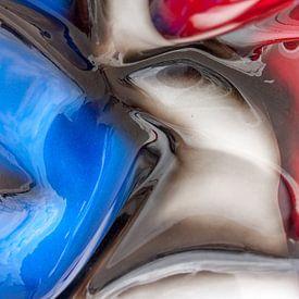 Rood, wit en blauw van Wijbe Visser