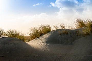 Duinen en helmgras aan de Noordzee kust van Henk Hulshof