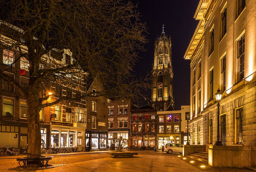 The Dom and the City van Marc Smits