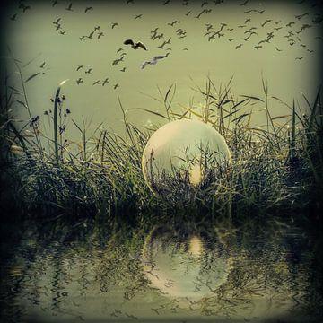 In der Glaskugel - Mystische Au von Christine Nöhmeier