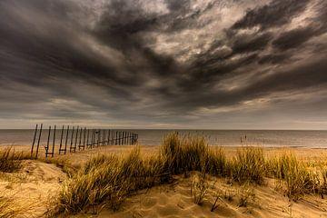 Strand von Texel von Andy Luberti