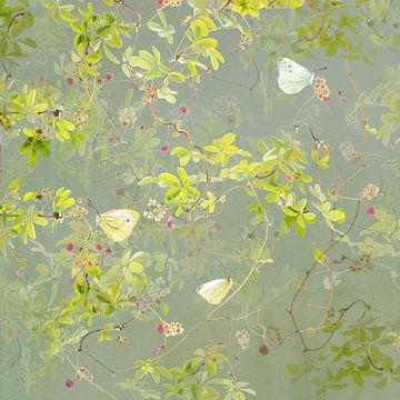 Akebia en geaderde witjes van