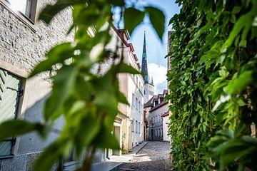 Straat in Tallinn, Estland van Ellis Peeters