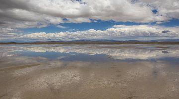 Laguna Llancanelo in den Anden in Argentinien von Marc Venema