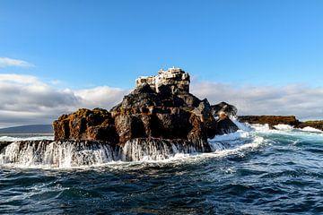 Isabela Galapagos eilanden van Hermineke Pijls