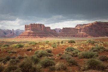 Valley of the Gods bij Kayenta Monument Valley van Hans Jansen