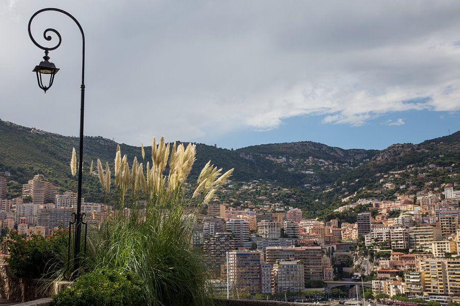 View on Monaco van Guido Akster