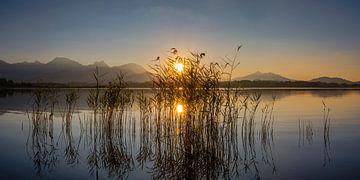 Zonsondergang, Hopfensee, Allgäu van