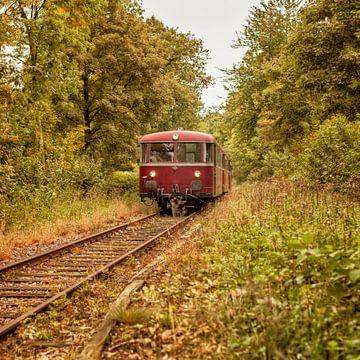 Railbus ZLSM tussen prachtige herfstkleuren