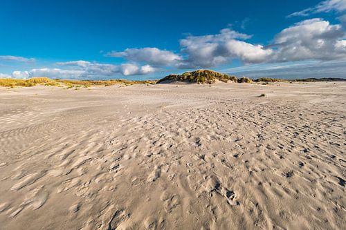 Dunes on the North Sea island Amrum