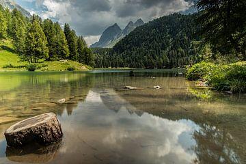 Spiegelung der Berge im Wasser von Sasja van der Grinten