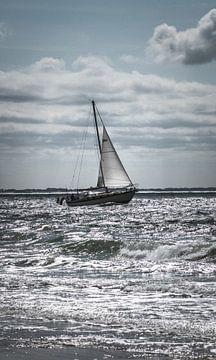 Sailing at sea van Katja • W