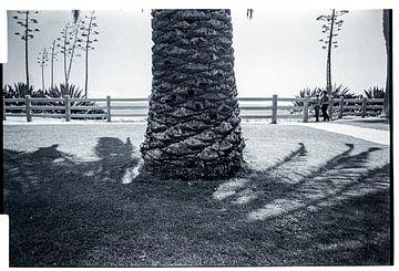 Santa Monica pier, Los Angeles, USA van Ruurd Dankloff