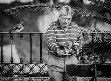 De duivenman in z'n element von Emil Golshani