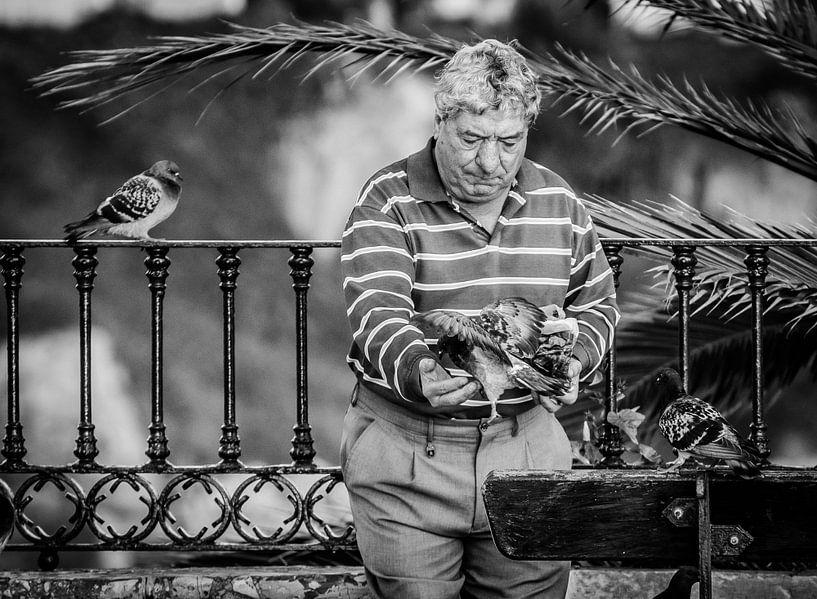 De duivenman in z'n element van Emil Golshani