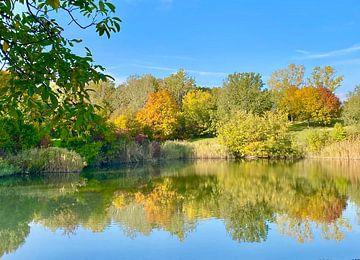 Herbstbäume am See