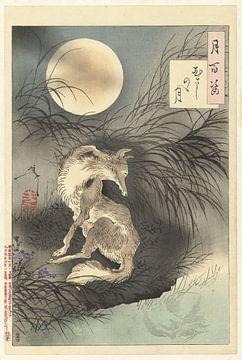 Mond von Musashi, Tsukioka Yoshitoshi, 1891