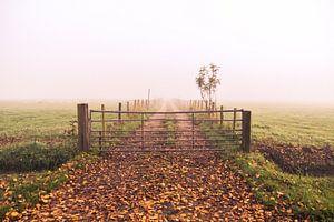 Boerenweg van
