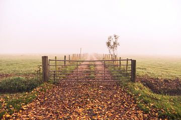 Boerenweg von Jordy Kortekaas