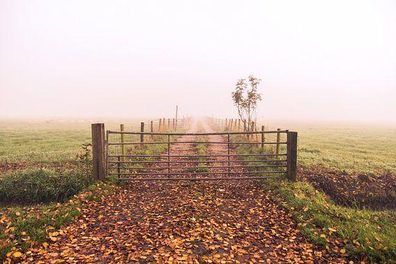Boerenweg van Jordy Kortekaas