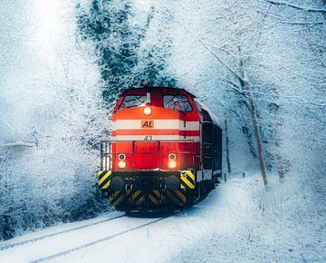 Rote Lok von Alexander Dorn