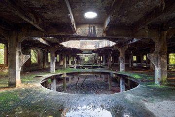 verlassene Halle mit eingewachsenem Baum von Kristof Ven