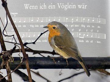 Als ik een vogel van Christine Nöhmeier