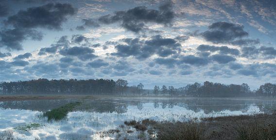 Wolken en Ochtendgloren in het veen