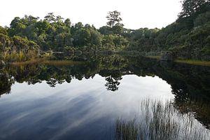 Lake Wilkie van Mark Sebregts