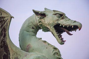 Kopf des Drachens auf der Drachenbrücke in Zentral-Lubliana, Slowenien von Joost Adriaanse