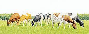 Koeien in stijlvol minimalistisch landschap (grof penseel) van
