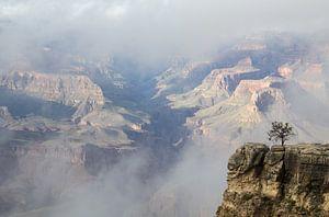 Grand Canyon, South Rim, Arizona, Amerika van Henk Alblas