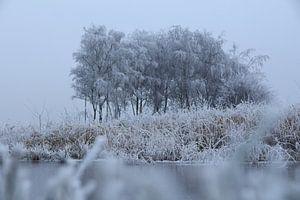 Friesland - Winter