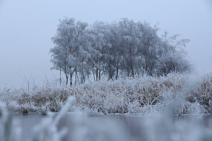 Friesland - Winter van Fotografie Sybrandy