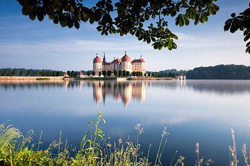 Schloss Moritzburg van