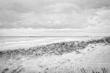 Het strand, Zandvoort van Wendy Tellier - Vastenhouw