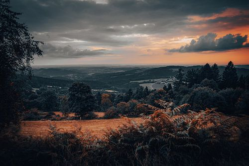 Panorama in nature with beautiful landscape, evening sky and forest. Bavarian Forest Germany
