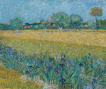Feld mit Blumen in der Nähe von Arles - Vincent van Gogh