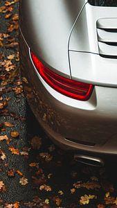 Porsche 911 Carrera 'Detail' I