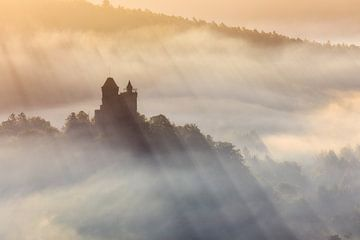 Burg Berwartstein im Morgennebel von Daniela Beyer