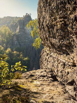 Bärenhornterrasse en Suisse saxonne - Vue sur le Heringstein sur Pixelwerk